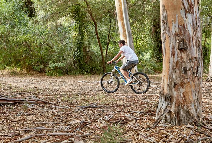 ραντεβού με ποδήλατα ηλιοακτίνας