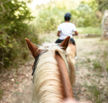 01-horse-riding-activities-in-riviera-olympia-luxury-resort